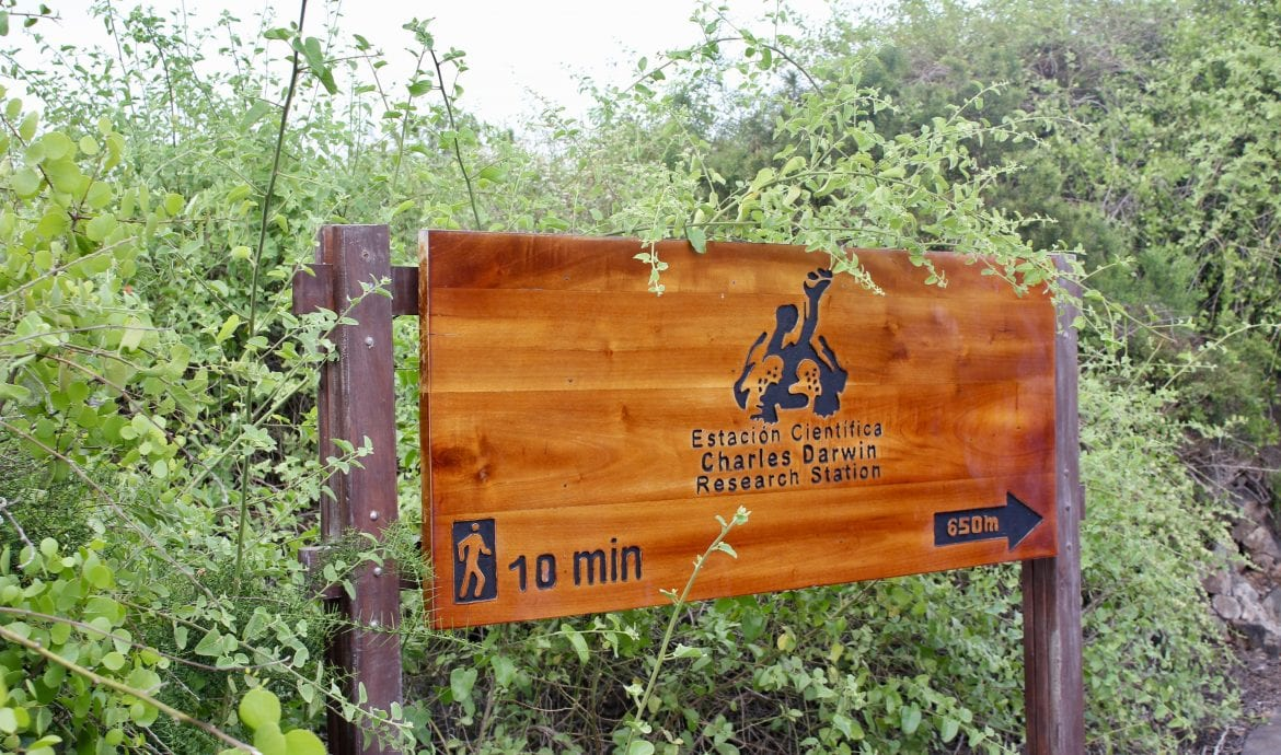 Visit the Charles Darwin Research Center